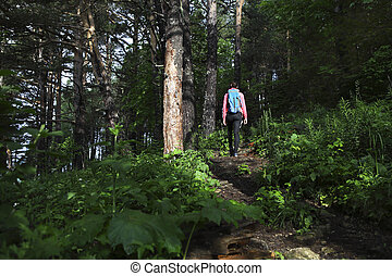 Hiker with backpack in mountain forest