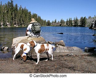 Hiker resting with dogs
