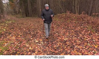 Hiker with hiking poles in the park in autumn