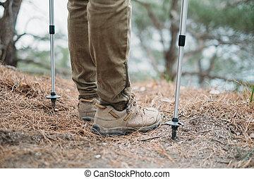 Hiker with trekking poles