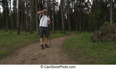 Hiker with walking sticks con path in the park