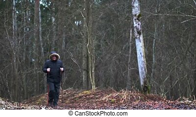 Hiker with walking sticks