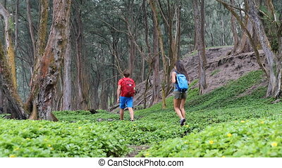 Male and female hikers walking in forest. Man and woman are carrying backpacks. Hiking couple is exploring woodland.
