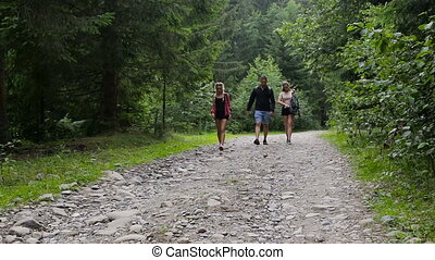 Hikers walking along a forest road in mountain