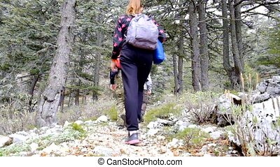 Hikers walking outdoors wearing hiker backpacks. - Hikers...