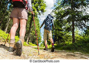 Hikers walking with trekking poles - Young hikers walking...