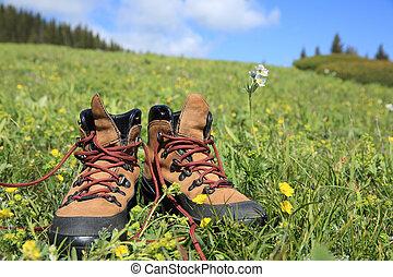 hiking boots on green grassland under blue sky