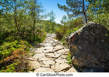 Hiking footpath to the Preikestolen and Lysefjord area, Norway