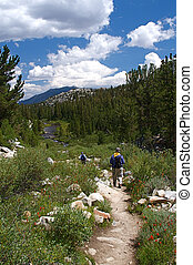 Hiking - Hikers traverse the high country meadows of an...
