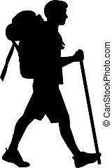hiking homem, com, vara