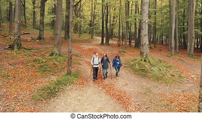 Hiking in Fall Woods