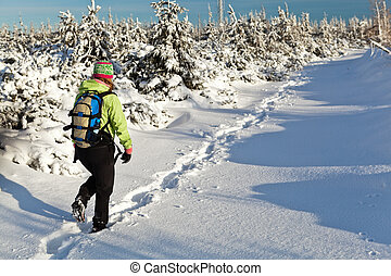 Hiking in winter mountains, Poland