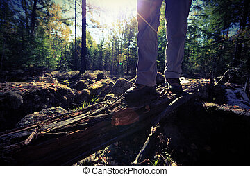 hiking legs in the sunrise forest