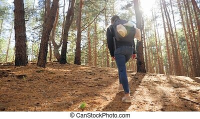 hiking, młody, ruch, video, piękny, wspinaczkowy, 4k, las, ...