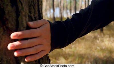 hiking, młody, video, dotknięcie ręka, las, kobieta, plecak...
