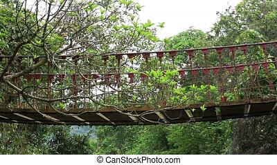 hiking, most, drewniany, zawieszenie