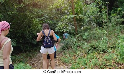 Hiking outdoors on nature. Friends travels through jungle forest. Tourists with a backpacks walk through a forest road. slow motion.