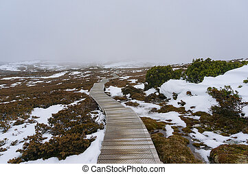 Hiking path in the mountain in winter