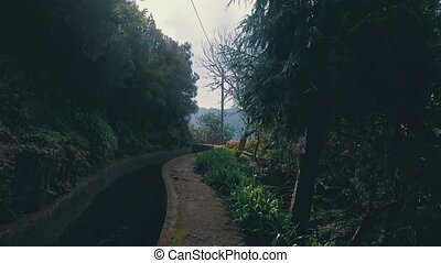 Hiking Pathway on the Levada Waterway with Green Vegetation,...