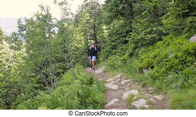 Hiking people. Hiker trio in the mountain. Two woman and man trekkers walking through forest path with backpack