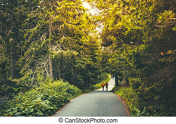 Hiking people walking in beautiful autumn forest