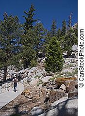 Hiking San Jacinto