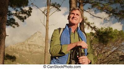 hiking, senior, czynny, las