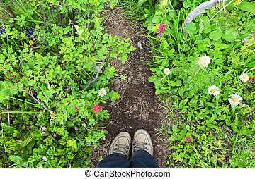 Hiking shoes on the trail with wild flowers and green grasses.