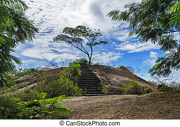 hiking the granite stairway in the jungle, mahé, seychelles 1