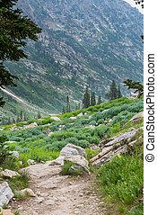 Hiking Through Cascade Canyon