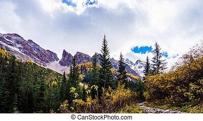 Hiking through the High Alpine