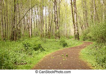 hiking traccia