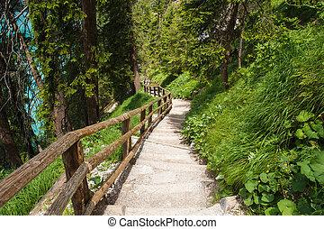 hiking trail around lake