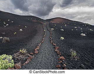 hiking trail in a volcanic ground