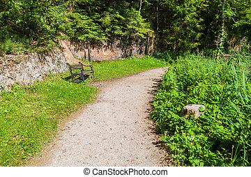 Hiking trail in Gauja National Park, Latvia