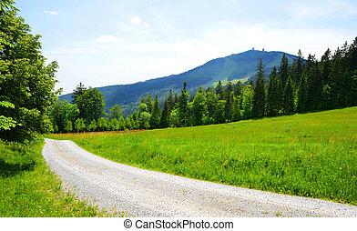 Mount Grosser Arber in National park Bavarian forest, Germany.