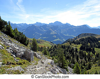 Hiking trail in the swiss mountains in summer