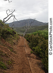 Hiking Trail in Wilsons Prom - Hiking Trail on the Tongue...