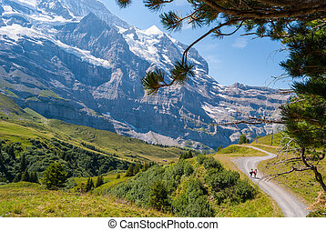 Hiking trail on the background of the stunning Alpine panorama of the Northern wall of the peak Eiger, Grindelwald, Bernese Alps, Switzerland, Europe