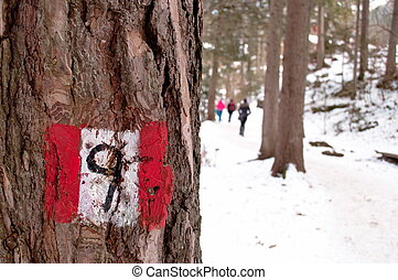 Hiking trail sign post on a tree