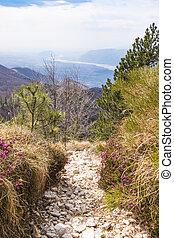 Hiking trail with view to Friuli-Venezia Giulia in Italy -...
