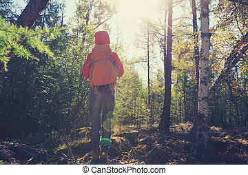 hiking woman with backpack in the sunrise forest