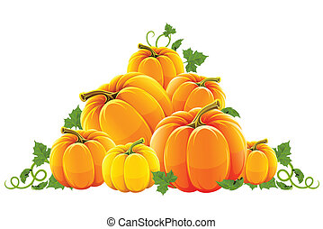hill harvest of orange ripe pumpkins vector illustration, isolated on white background