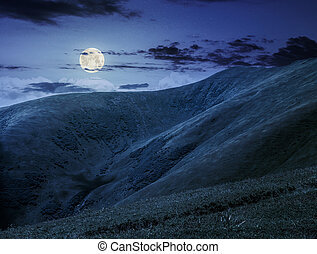 hill side meadow in summer at night - green grass on...