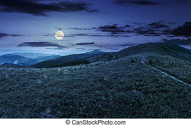 hill side meadow in summer at night - summer mountain...