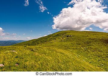 hill side meadow in summer - green grass on hillside meadow...