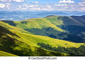 hill side meadow in summer - summer mountain landscape under...