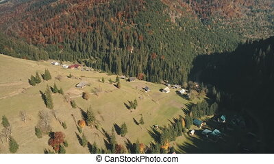 hill valley with village rare houses among pine trees -...