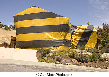 hilldie home tented for termite eradication - hillside home...