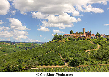 Hills and vineyards of Piedmont, Italy. - View on vineyards ...
